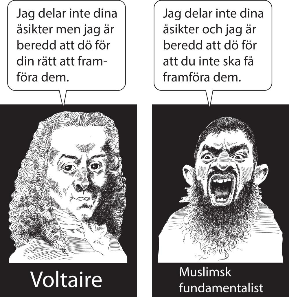 Citatet tillskrivs Voltaire men är ifrågasatt. Bilden Copyright Kjell Nilsson - Mäki för Ledarsidorna.se