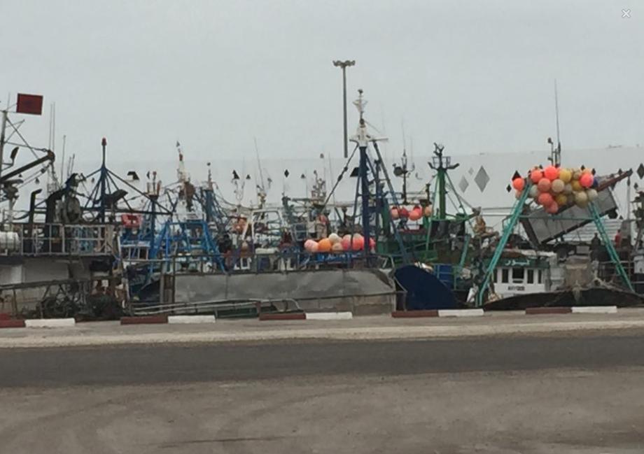 Dahklas fiskeflotta till kaj. Fotografi: Eget.