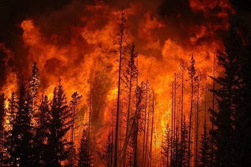 Sveriges låga brandförsvarsförmåga har flera orsaker