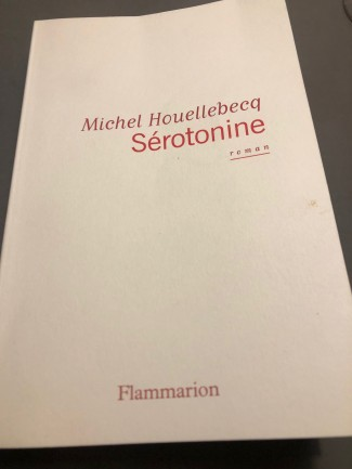 "Vad är en man? Recension av Michel Houellebecq  ""Serotonine"""