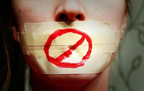 S löfte om skydd för journalister substanslöst - Avser fortfarande driva igenom Lex Ledarsidorna